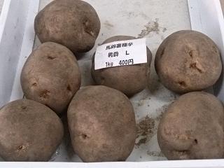 男爵の種芋