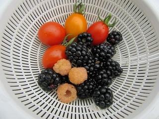 ミニトマトとベリー